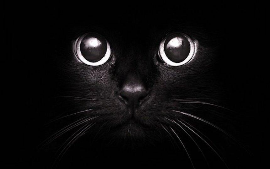 О приметах и суевериях
