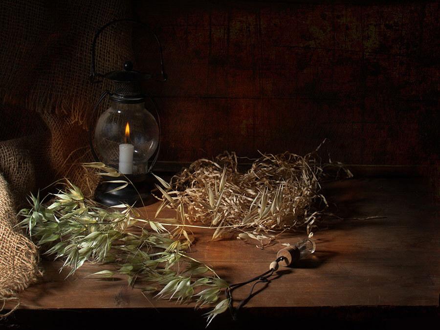 Взаимозаменяемость трав